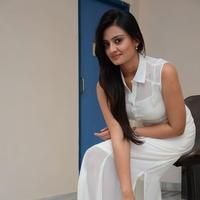 Nikitha Narayan at Ladies and Gentlemen Press Meet Photos | Picture 950016