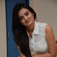 Nikitha Narayan at Ladies and Gentlemen Press Meet Photos | Picture 950017
