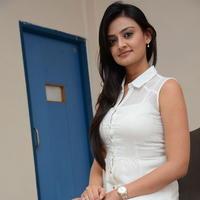 Nikitha Narayan at Ladies and Gentlemen Press Meet Photos | Picture 950023