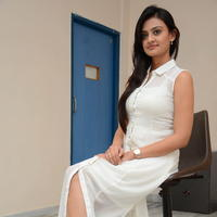 Nikitha Narayan at Ladies and Gentlemen Press Meet Photos | Picture 950024