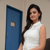 Nikitha Narayan at Ladies and Gentlemen Press Meet Photos | Picture 950025
