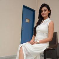 Nikitha Narayan at Ladies and Gentlemen Press Meet Photos | Picture 950026