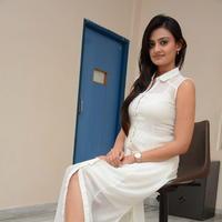 Nikitha Narayan at Ladies and Gentlemen Press Meet Photos | Picture 950028