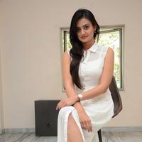 Nikitha Narayan at Ladies and Gentlemen Press Meet Photos | Picture 950029