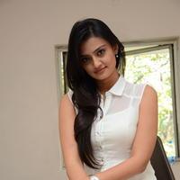Nikitha Narayan at Ladies and Gentlemen Press Meet Photos | Picture 950030