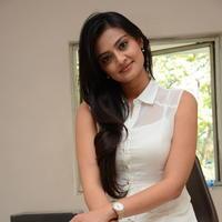 Nikitha Narayan at Ladies and Gentlemen Press Meet Photos | Picture 950032