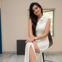 Nikitha Narayan at Ladies and Gentlemen Press Meet Photos | Picture 950033
