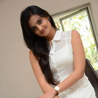 Nikitha Narayan at Ladies and Gentlemen Press Meet Photos | Picture 950034