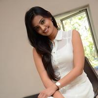Nikitha Narayan at Ladies and Gentlemen Press Meet Photos | Picture 950035