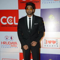 Rana Daggubati - Celebs at 100 Hearts Red Carpet by CCL Stills | Picture 951783