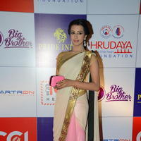 Sanjana at 100 Hearts Red Carpet by CCL Stillls | Picture 951180