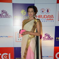 Sanjana at 100 Hearts Red Carpet by CCL Stillls | Picture 951181