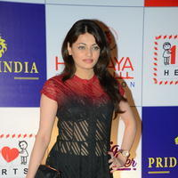 Sneha Ullal at 100 Hearts Red Carpet by CCL Photos | Picture 951124