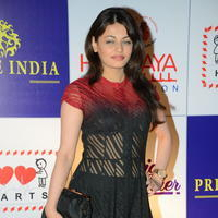 Sneha Ullal at 100 Hearts Red Carpet by CCL Photos | Picture 951125