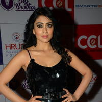 Shriya Saran at 100 Hearts Red Carpet by CCL Photos | Picture 951329