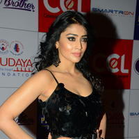 Shriya Saran at 100 Hearts Red Carpet by CCL Photos | Picture 951332