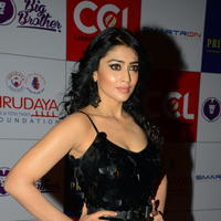 Shriya Saran at 100 Hearts Red Carpet by CCL Photos | Picture 951333
