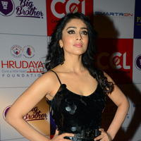 Shriya Saran at 100 Hearts Red Carpet by CCL Photos | Picture 951340
