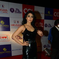 Shriya Saran at 100 Hearts Red Carpet by CCL Photos | Picture 951344