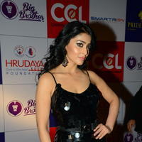 Shriya Saran at 100 Hearts Red Carpet by CCL Photos | Picture 951351
