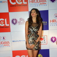 Shubra Aiyappa at 100 Hearts Red Carpet by CCL Stills | Picture 950981