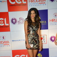 Shubra Aiyappa at 100 Hearts Red Carpet by CCL Stills | Picture 950986