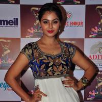 Monal Gajjar at TSR TV9 National Film Awards 2015 Stills