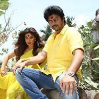 Begumpeta Movie Gallery | Picture 1079264