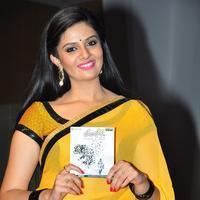 Sreemukhi - Hora Hori Movie Audio Launch Stills | Picture 1082086