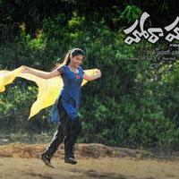 Hora Hori Movie Wallpapers | Picture 1082321