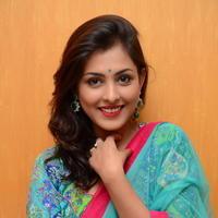 Madhu Shalini in Saree Photos   Picture 1082356