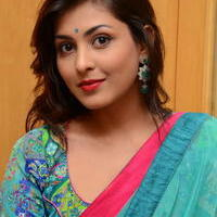 Madhu Shalini in Saree Photos   Picture 1082359