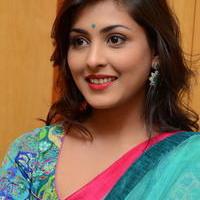 Madhu Shalini in Saree Photos   Picture 1082360