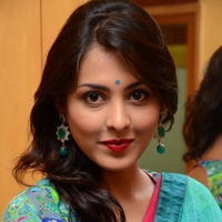 Madhu Shalini in Saree Photos   Picture 1082363