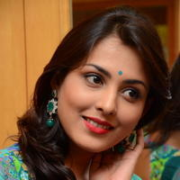 Madhu Shalini in Saree Photos   Picture 1082367