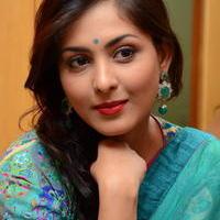 Madhu Shalini in Saree Photos   Picture 1082369