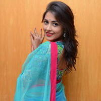 Madhu Shalini in Saree Photos   Picture 1082370