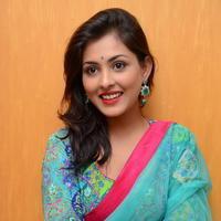 Madhu Shalini in Saree Photos   Picture 1082371