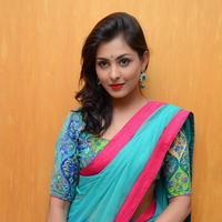Madhu Shalini in Saree Photos   Picture 1082373