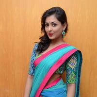 Madhu Shalini in Saree Photos   Picture 1082374