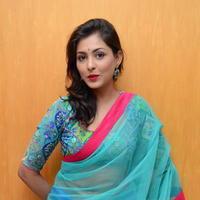 Madhu Shalini in Saree Photos   Picture 1082375
