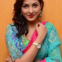Madhu Shalini in Saree Photos   Picture 1082377