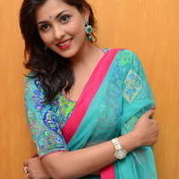 Madhu Shalini in Saree Photos   Picture 1082378