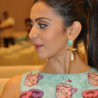 Rakul Preet Singh - Pandaga Chesko Movie Platinum Disc Function Photos
