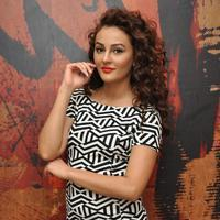 Seerat Kapoor at Tiger Movie Success Meet Stills