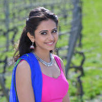 Rakul Preet Singh - Pandaga Chesko Movie New Gallery
