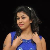 Geetanjali at Eluka Majaka Movie Audio Launch Photos | 1154966