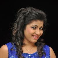 Geetanjali at Eluka Majaka Movie Audio Launch Photos