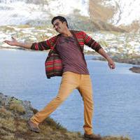 Gopichand - Soukhyam Movie New Gallery