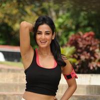 Sonal Chauhan - Size Zero Movie New Stills | Picture 1157124